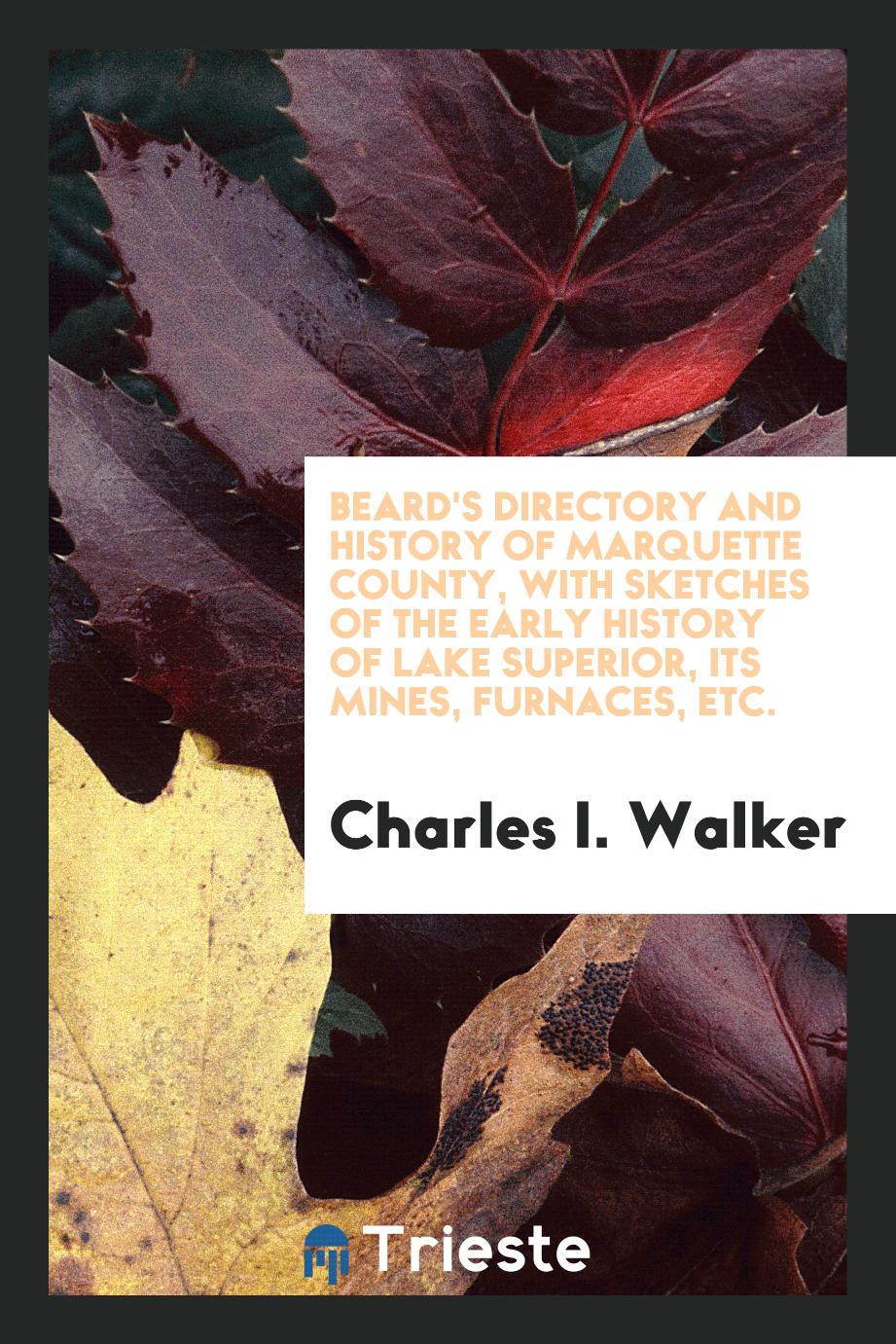 Beard's Directory and History of Marquette County, with Sketches of the Early History of Lake Superior, Its Mines, Furnaces, Etc.