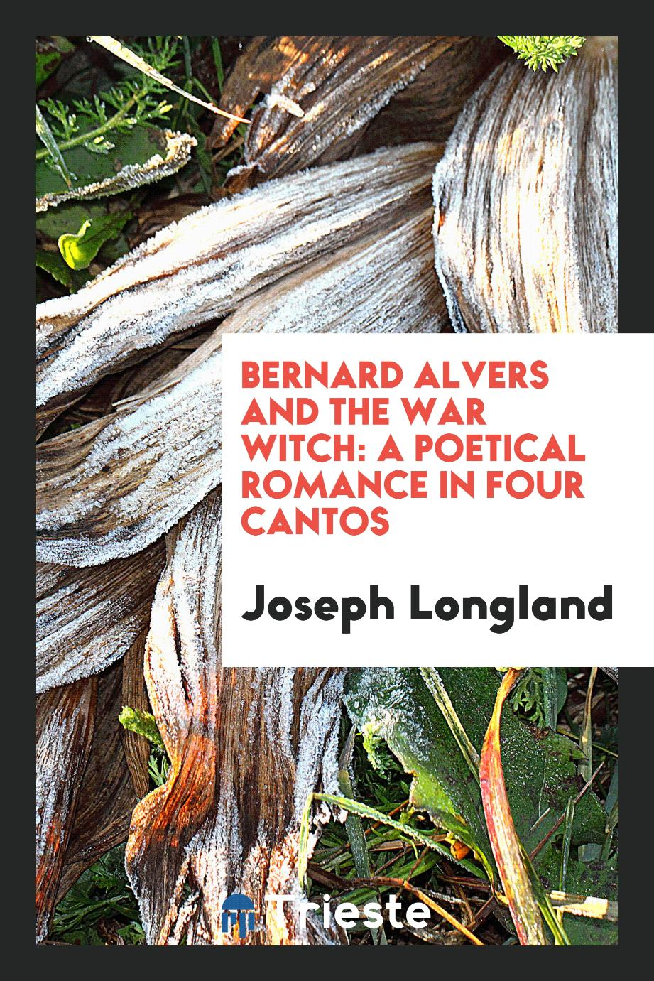 Bernard Alvers and the War Witch: A Poetical Romance in Four Cantos