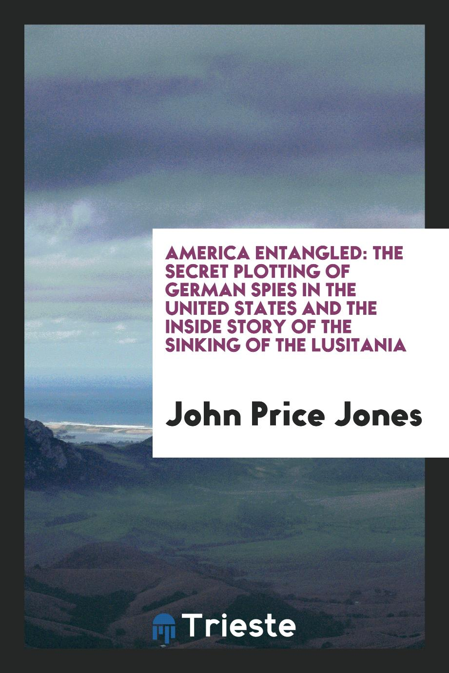America Entangled: The Secret Plotting of German Spies in the United States and the Inside Story of the Sinking of the Lusitania