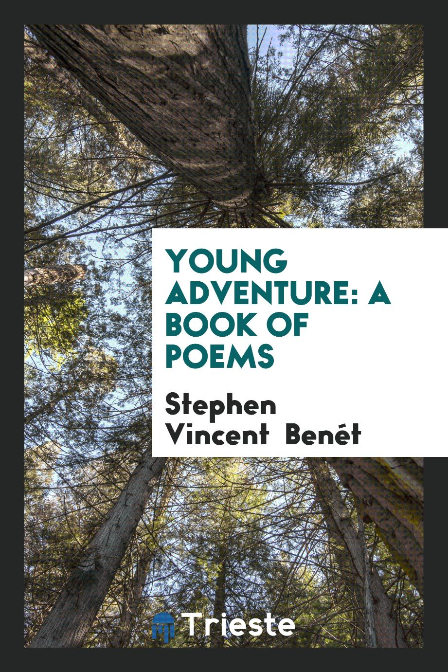 Young Adventure: A Book of Poems