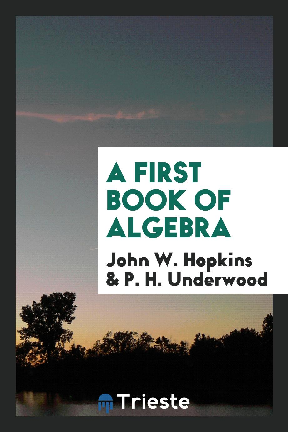 A First Book of Algebra