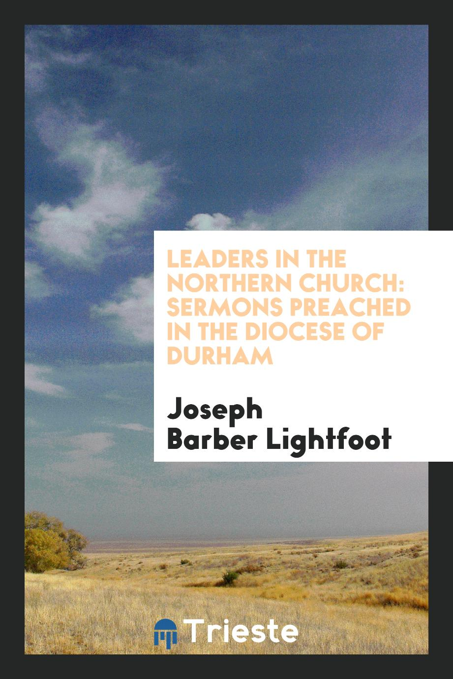 Leaders in the northern church: sermons preached in the Diocese of Durham