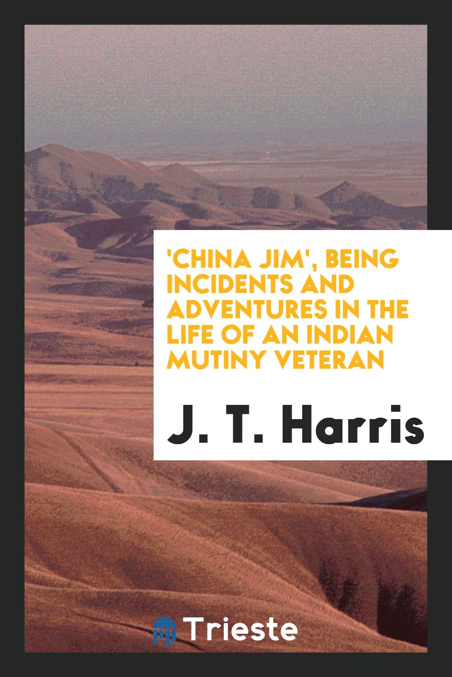 'China Jim', Being Incidents and Adventures in the Life of an Indian Mutiny Veteran