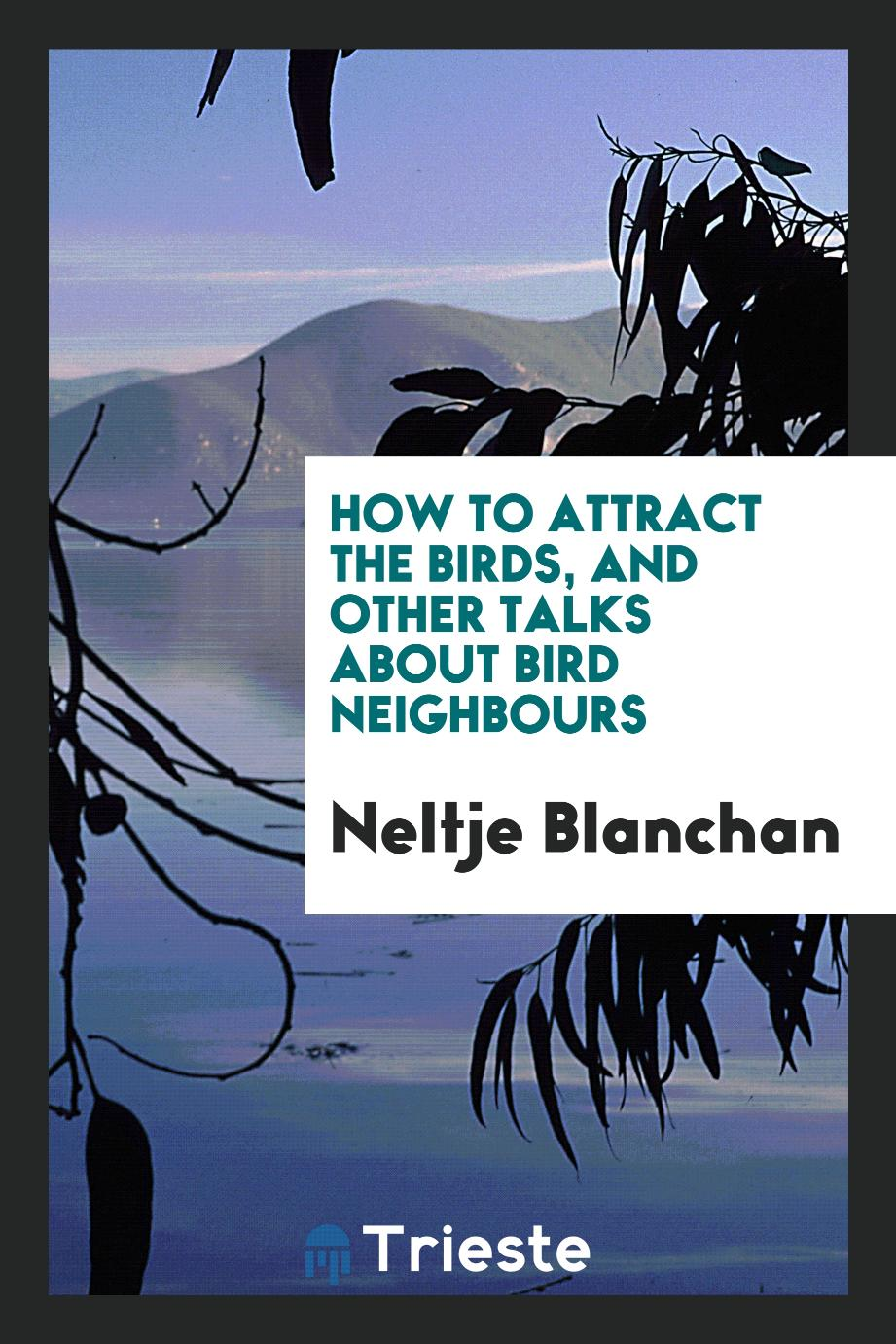 How to Attract the Birds, and Other Talks about Bird Neighbours