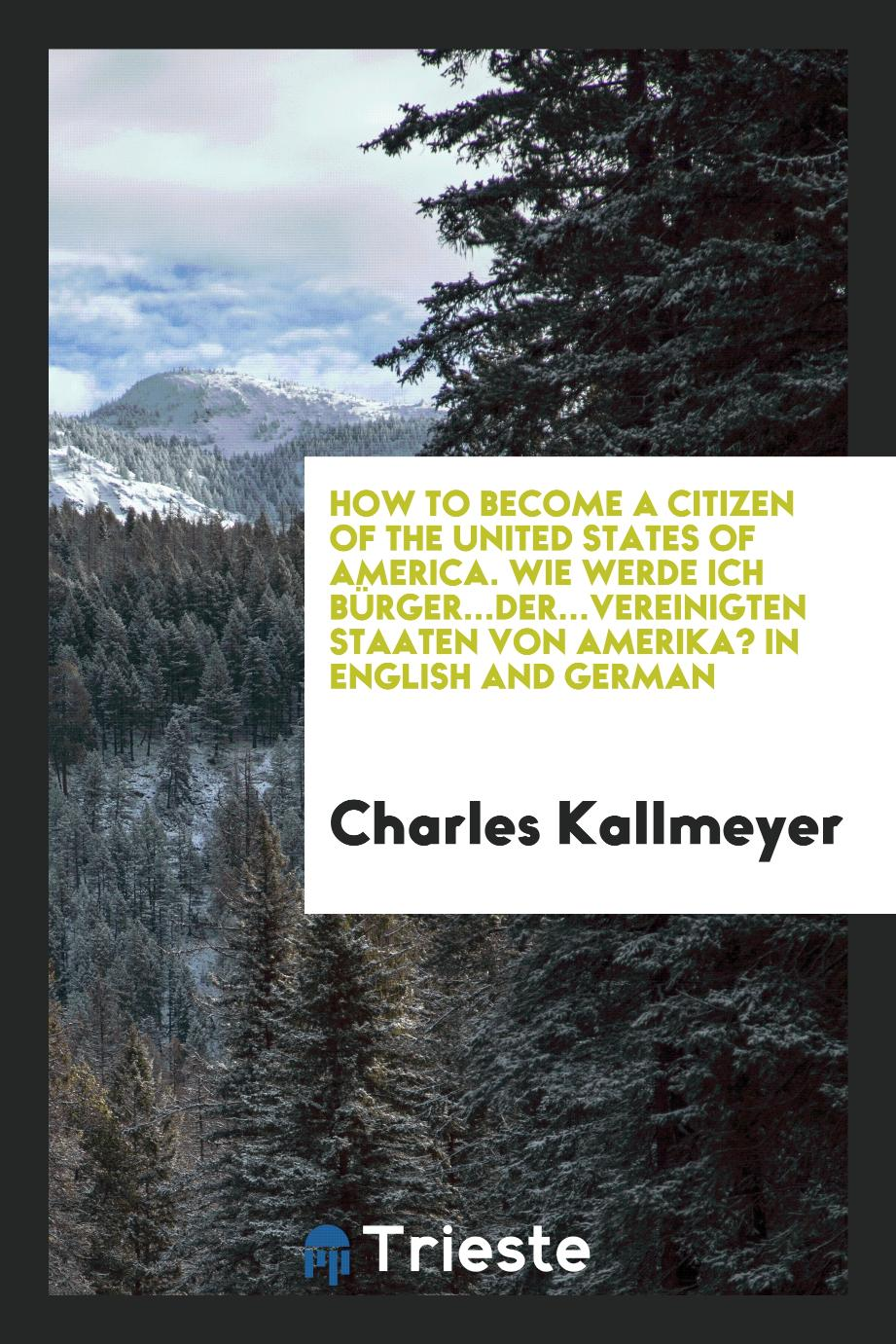How to Become a Citizen of the United States of America. Wie werde ich Bürger...der...Vereinigten Staaten von Amerika? In English and German
