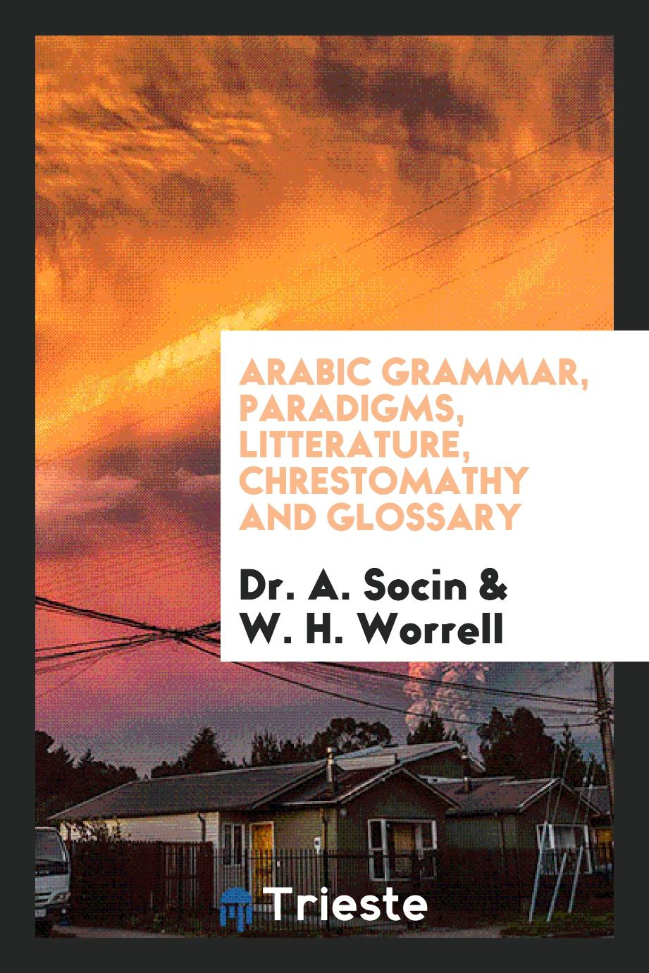 Arabic Grammar, Paradigms, Litterature, Chrestomathy and Glossary