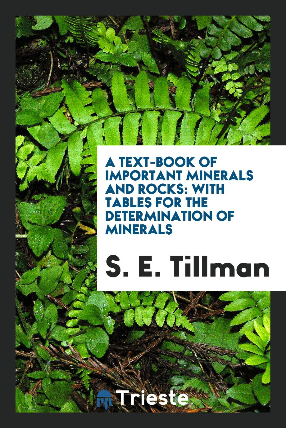 A Text-Book of Important Minerals and Rocks: With Tables for the Determination of Minerals