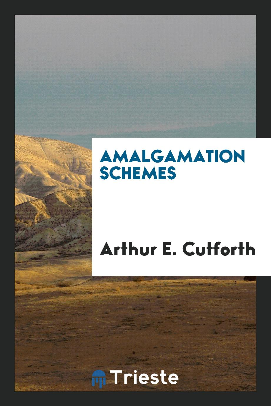 Amalgamation Schemes