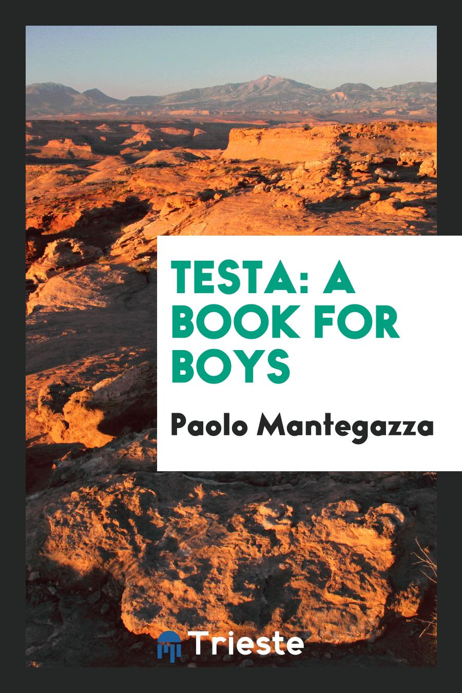 Testa: A Book for Boys