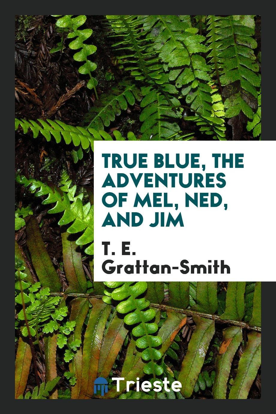True blue, the adventures of Mel, Ned, and Jim