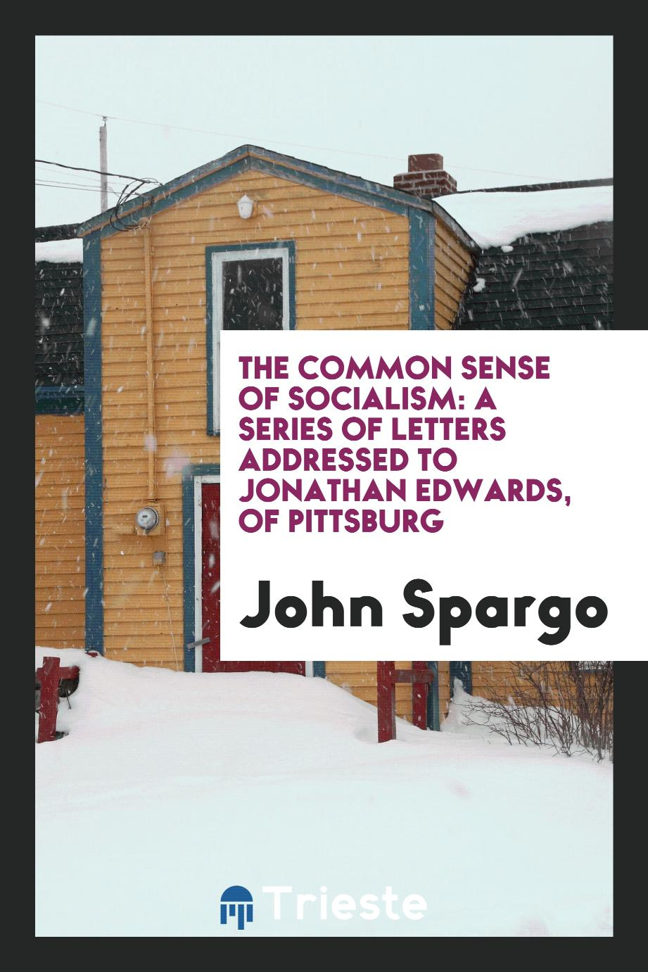 The Common Sense of Socialism: A Series of Letters Addressed to Jonathan Edwards, of Pittsburg
