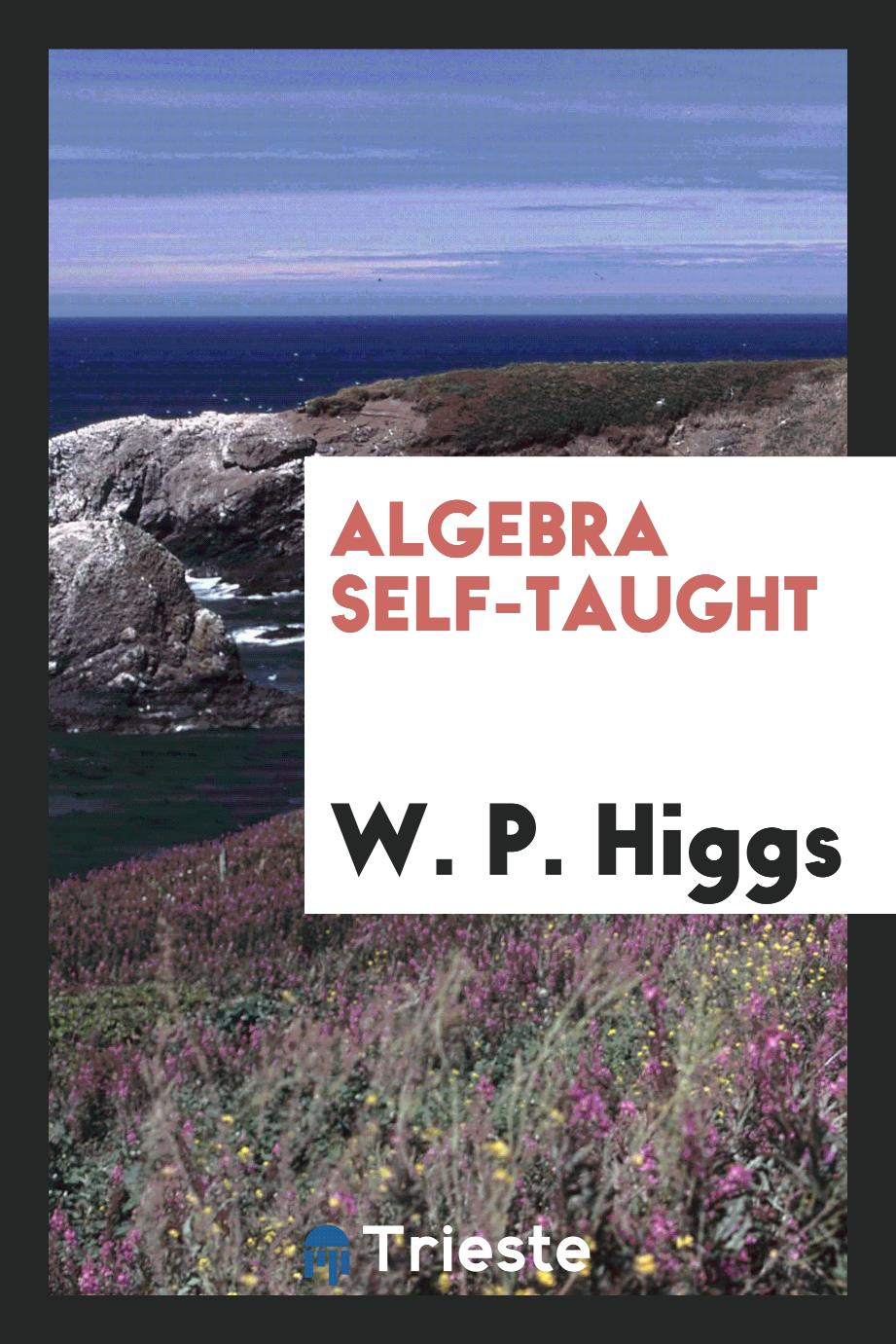 Algebra Self-Taught