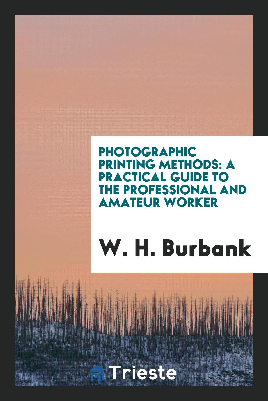 Photographic printing methods: a practical guide to the professional and amateur worker