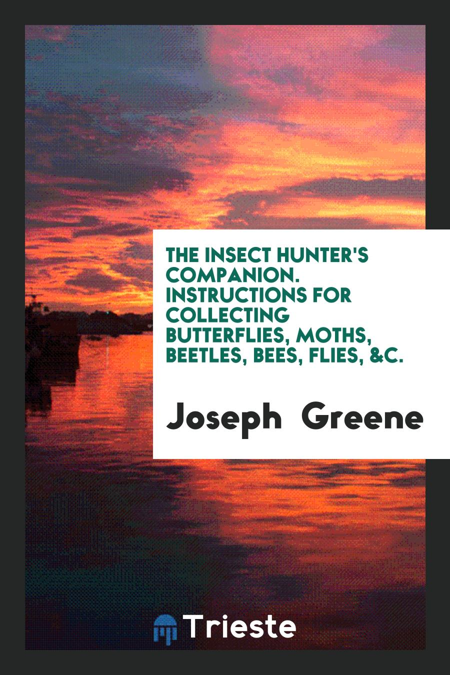 The Insect Hunter's Companion. Instructions for Collecting Butterflies, Moths, Beetles, Bees, Flies, &C.