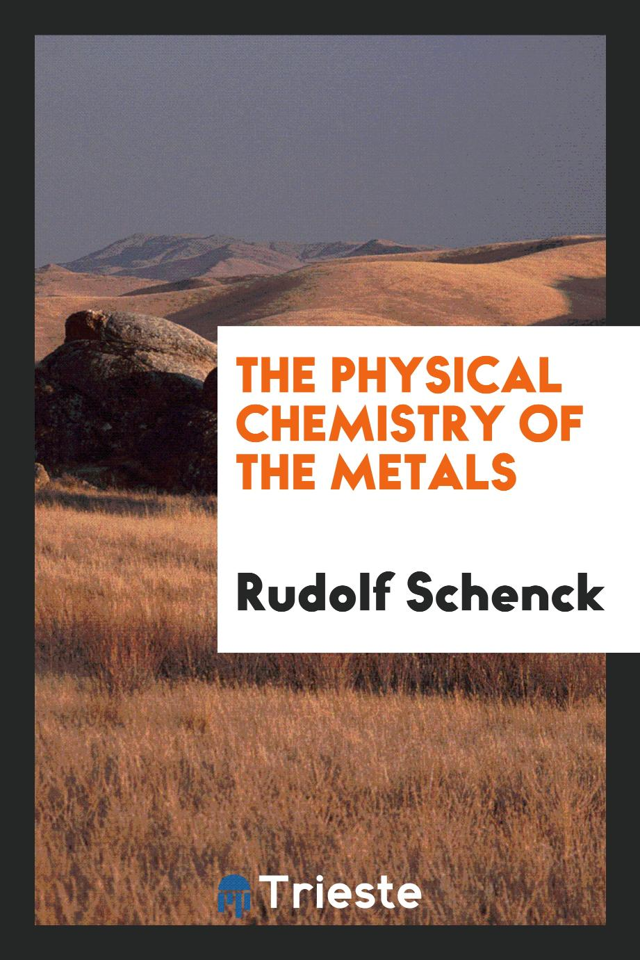 The physical chemistry of the metals
