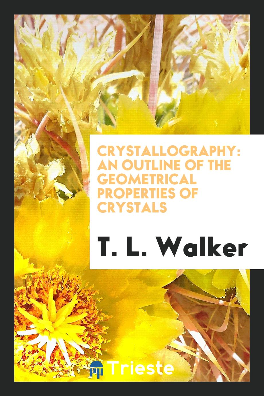 Crystallography: An Outline of the Geometrical Properties of Crystals