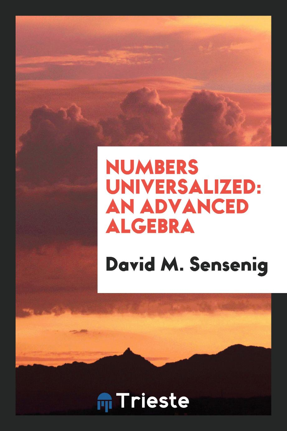 Numbers universalized: an advanced algebra