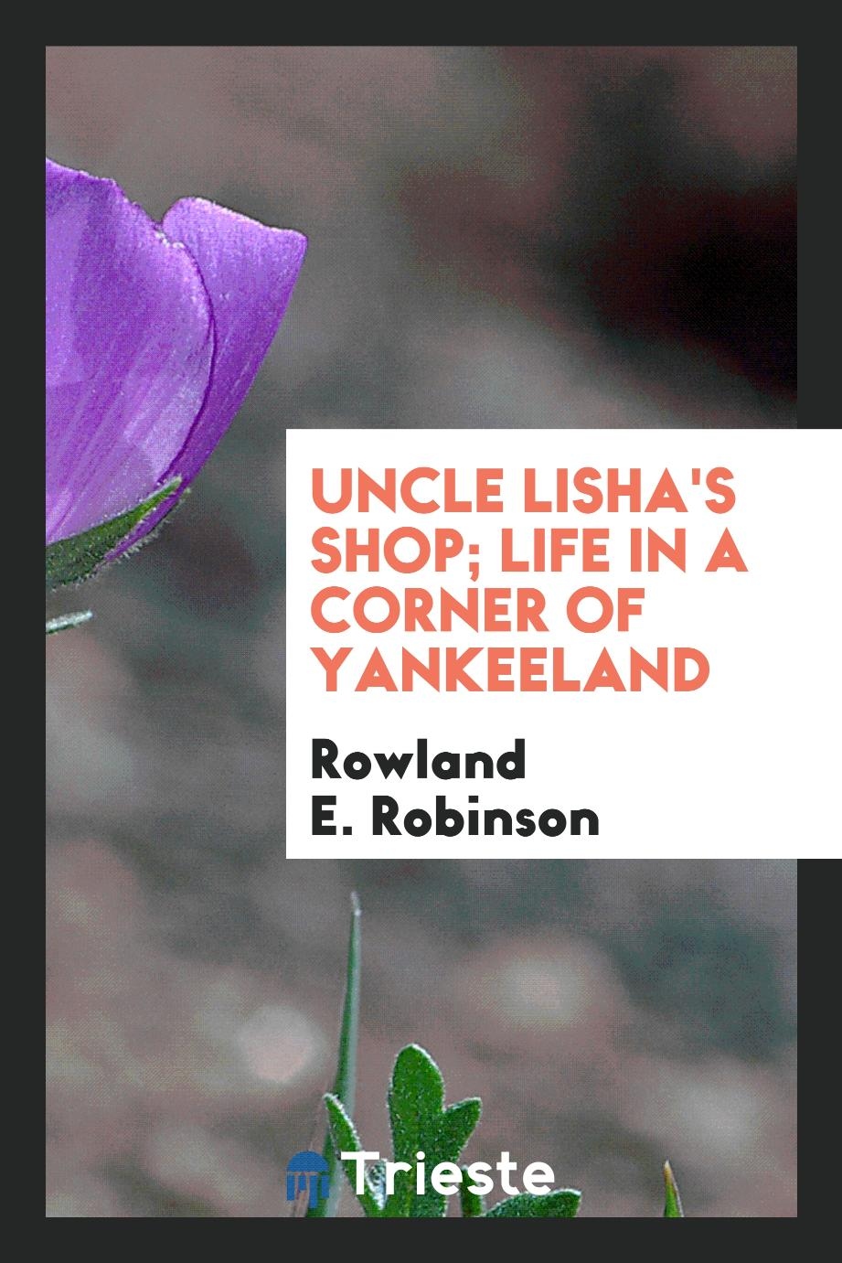 Uncle Lisha's shop; life in a corner of Yankeeland