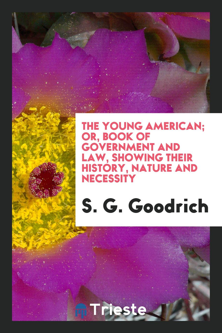The young American; or, Book of government and law, showing their history, nature and necessity