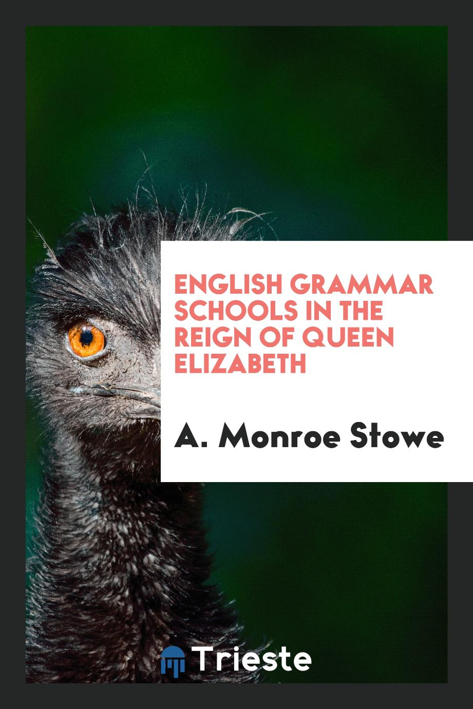 English Grammar Schools in the Reign of Queen Elizabeth