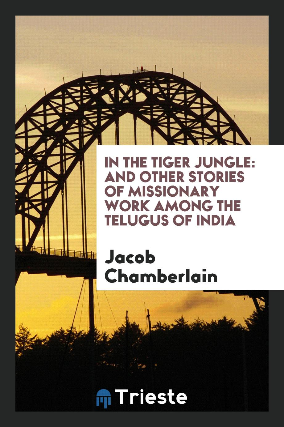 In the tiger jungle: and other stories of missionary work among the Telugus of India