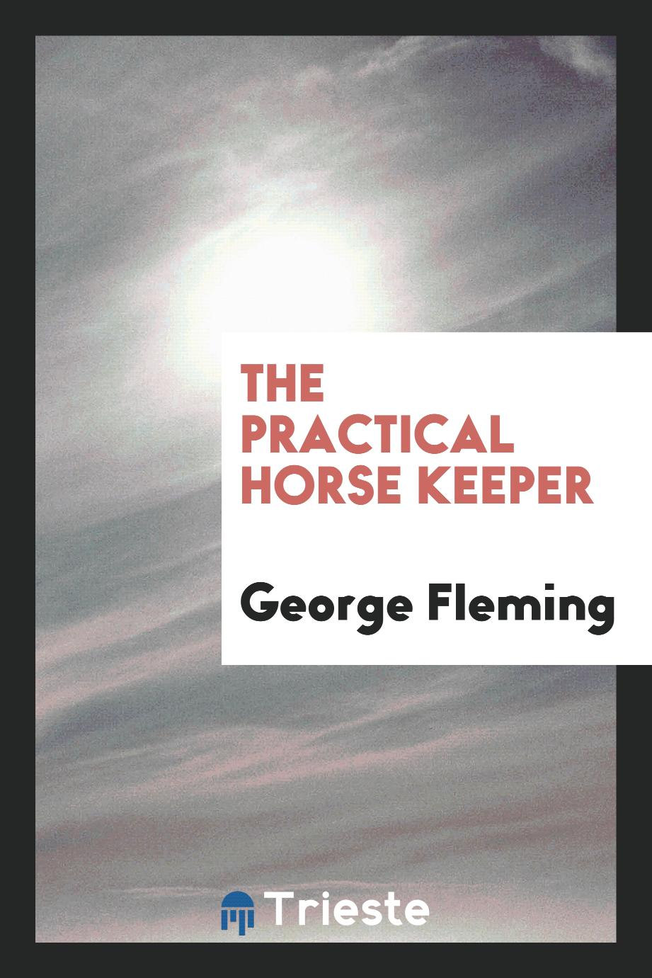 The practical horse keeper