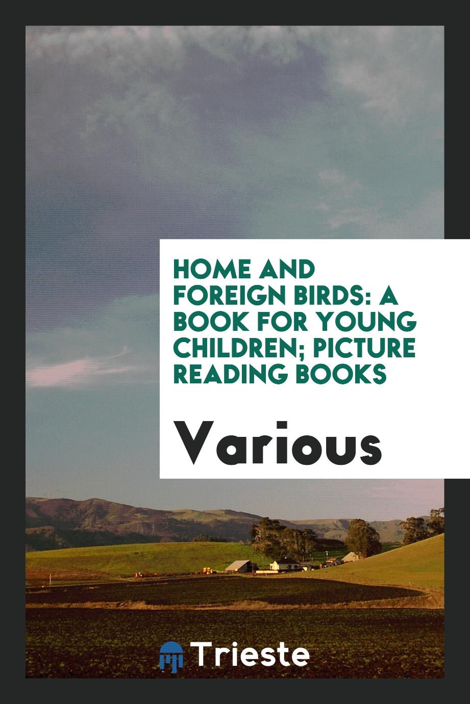 Home and Foreign Birds: A Book for Young Children; Picture reading books