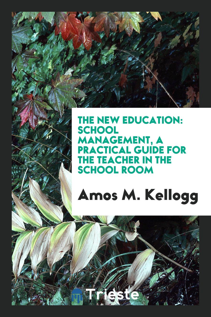 The New Education: School Management, a Practical Guide for the Teacher in the School Room