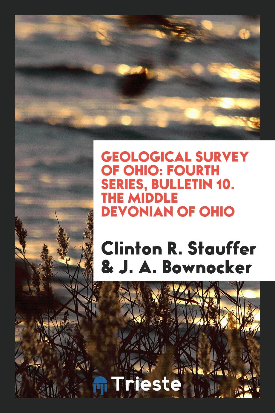 Geological Survey of Ohio: Fourth Series, Bulletin 10. The Middle Devonian of Ohio