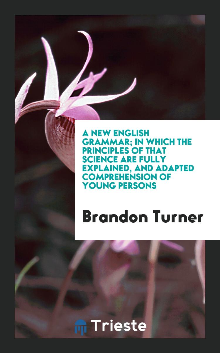 A New English Grammar; In which the Principles of that Science are Fully Explained, and Adapted Comprehension of Young Persons