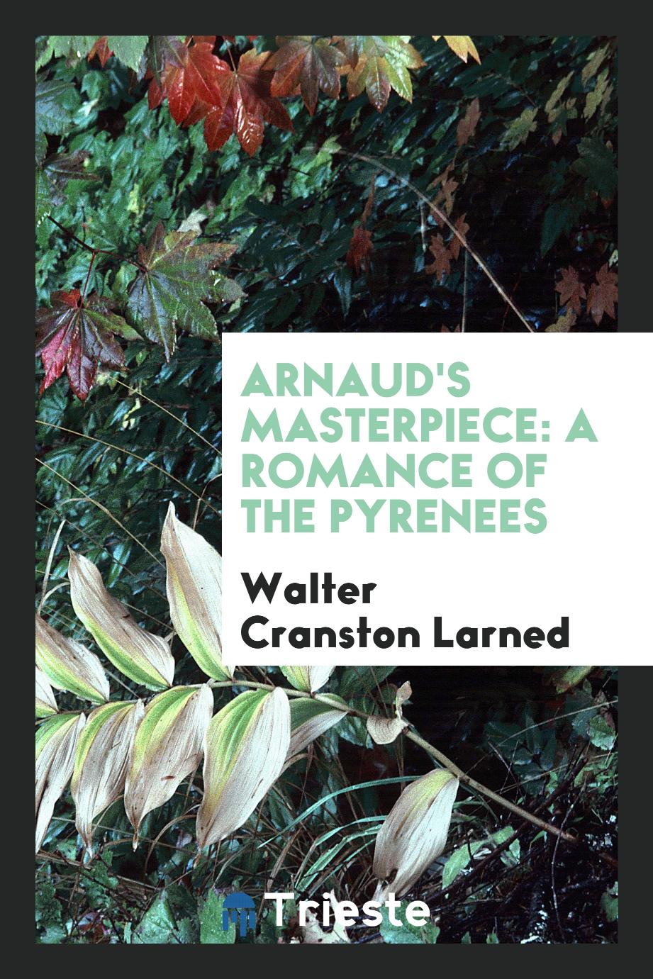 Arnaud's Masterpiece: A Romance of the Pyrenees