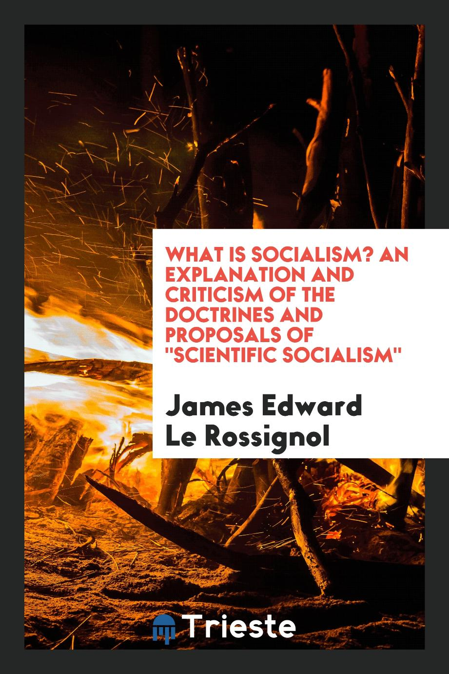 "What is socialism? An explanation and criticism of the doctrines and proposals of ""scientific socialism"""