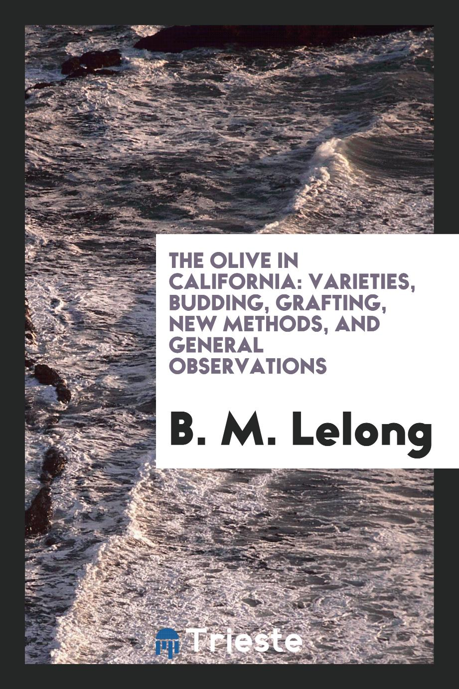 The Olive in California: Varieties, Budding, Grafting, New Methods, and General observations