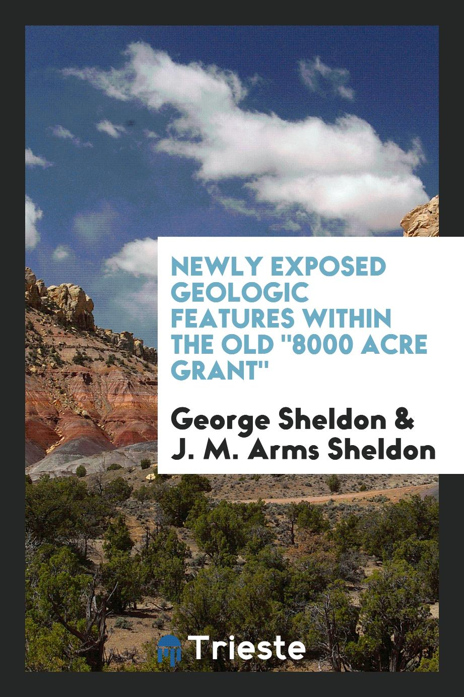 "Newly exposed geologic features within the old ""8000 acre grant"""