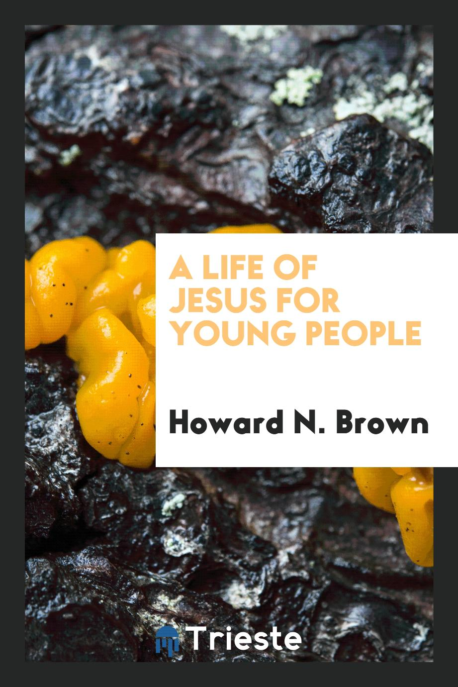 A Life of Jesus for Young People