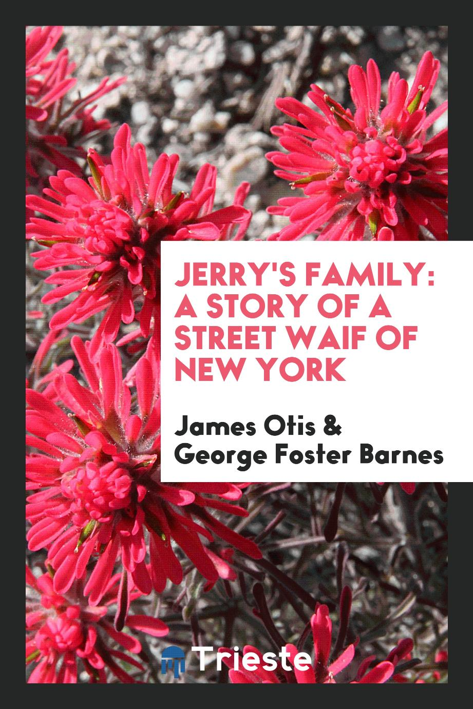 Jerry's Family: A Story of a Street Waif of New York
