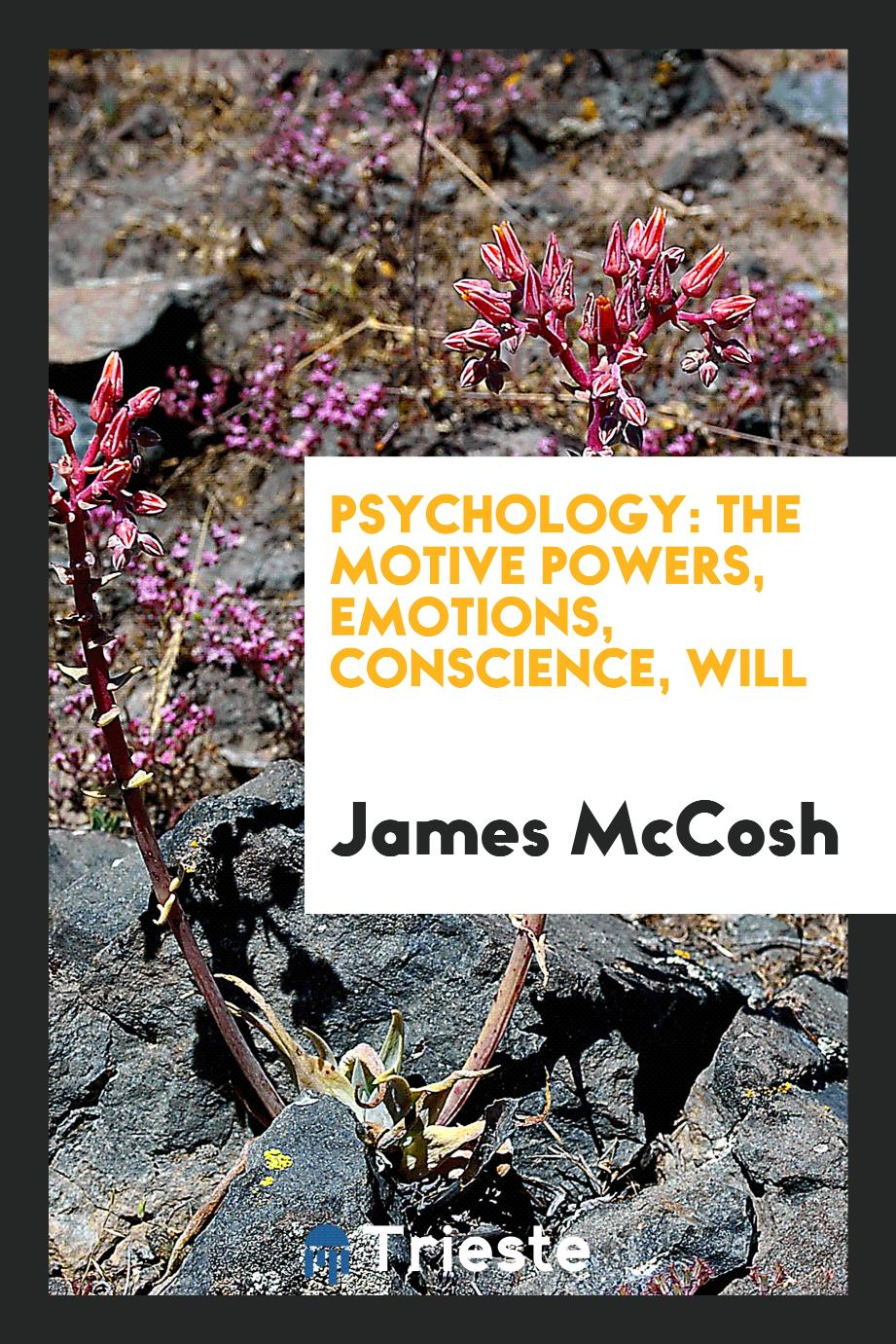 Psychology: the motive powers, emotions, conscience, will