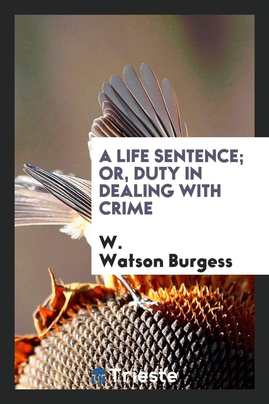 A Life Sentence; Or, Duty in Dealing with Crime