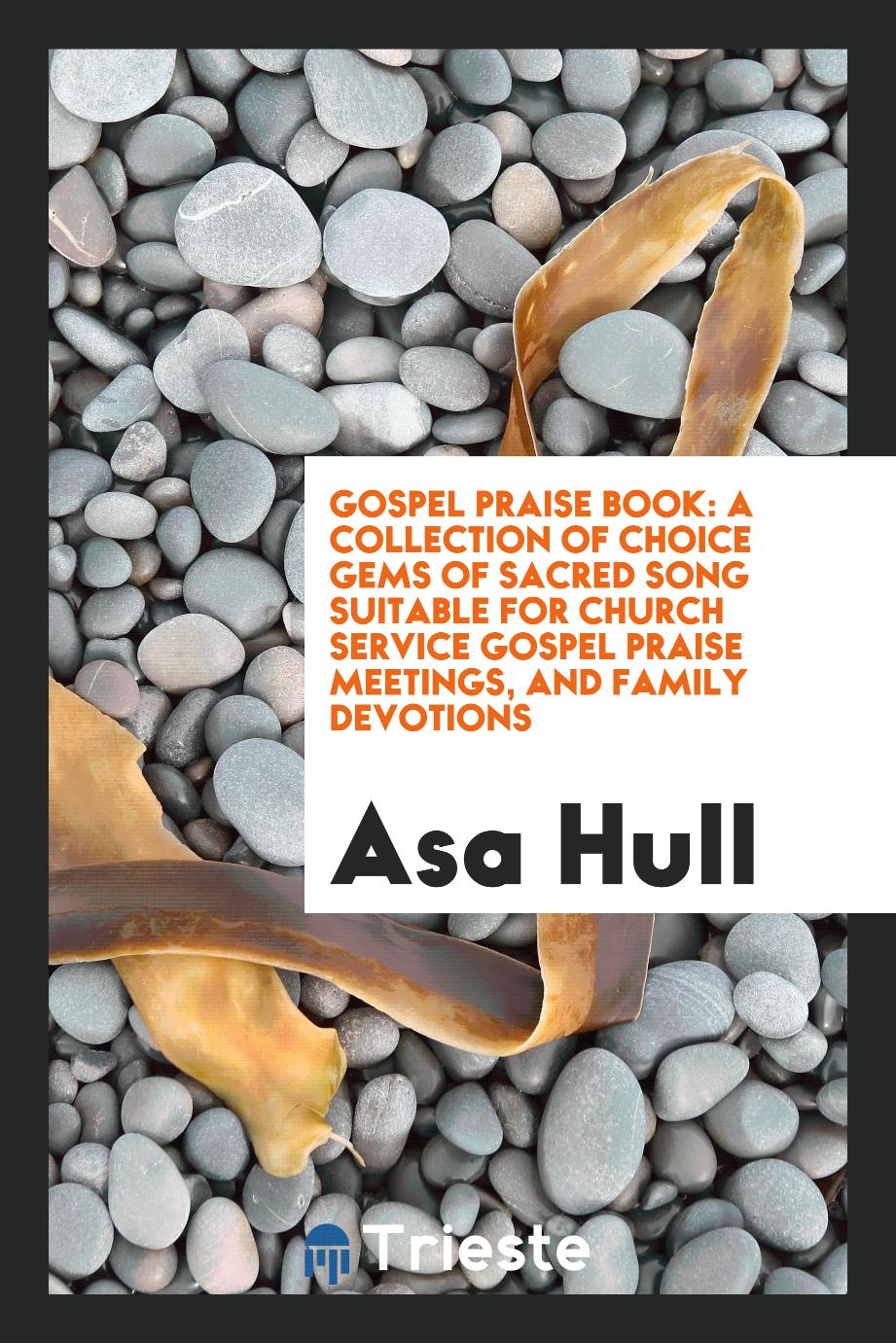 Gospel Praise Book: A Collection of Choice Gems of Sacred Song Suitable for Church Service Gospel Praise Meetings, and Family Devotions
