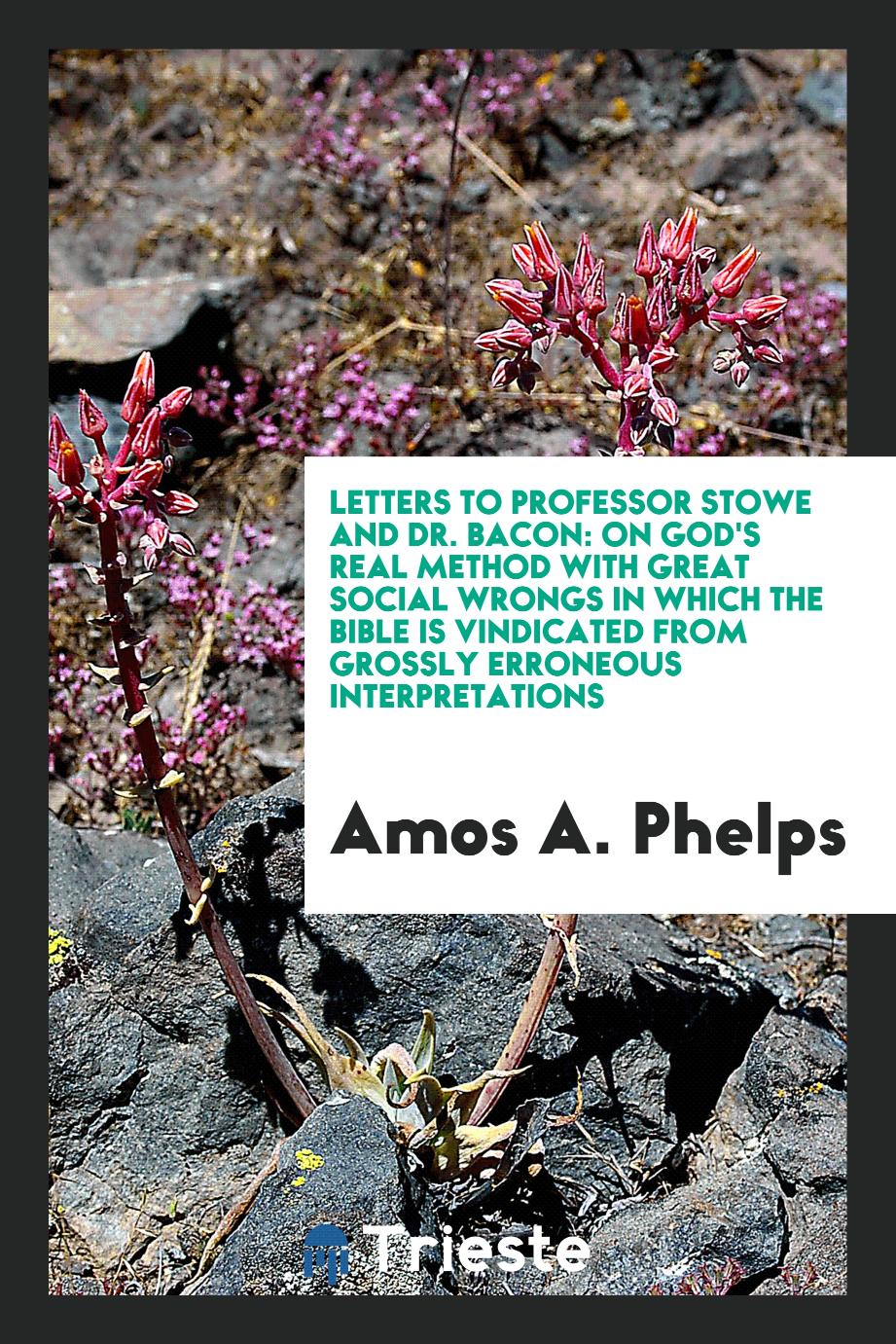 Amos A. Phelps - Letters to Professor Stowe and Dr. Bacon: On God's Real Method with Great Social Wrongs in Which the Bible Is Vindicated from Grossly Erroneous Interpretations
