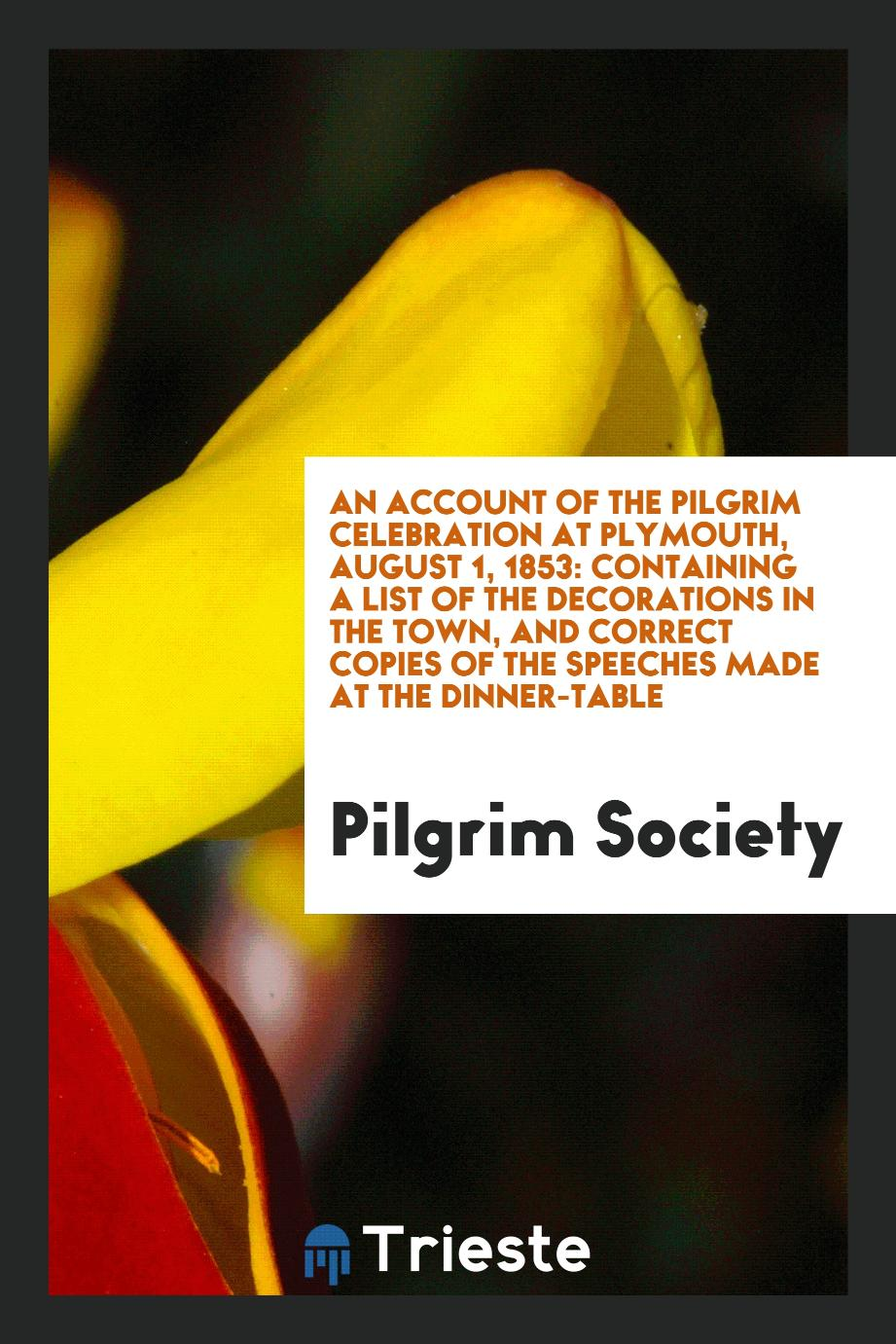 An Account of the Pilgrim Celebration at Plymouth, August 1, 1853: Containing a List of the Decorations in the Town, and Correct Copies of the Speeches Made at the Dinner-Table