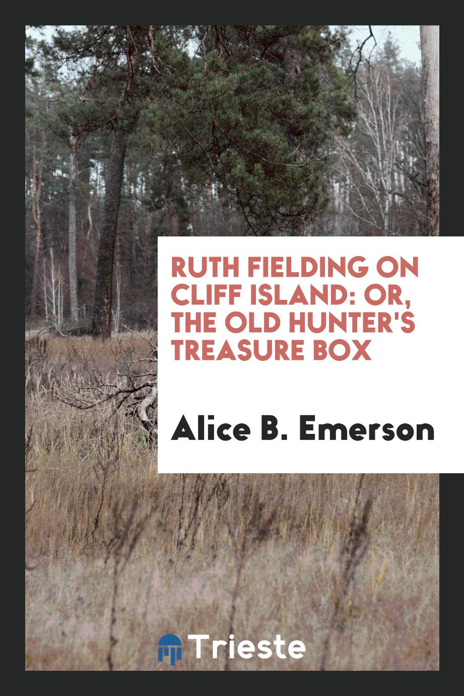 Ruth Fielding on Cliff Island: Or, the Old Hunter's Treasure Box