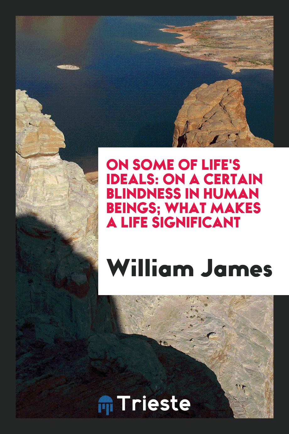 On Some of Life's Ideals: On a Certain Blindness in Human Beings; What Makes a Life Significant