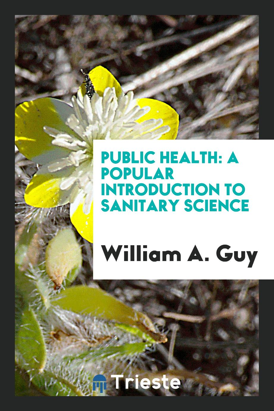 Public health: a popular introduction to sanitary science