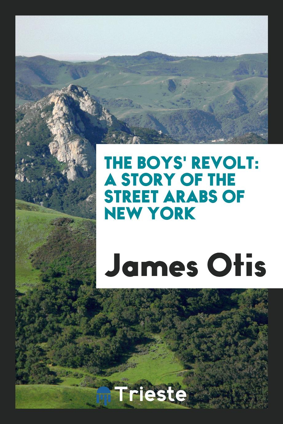 The Boys' Revolt: A Story of the Street Arabs of New York