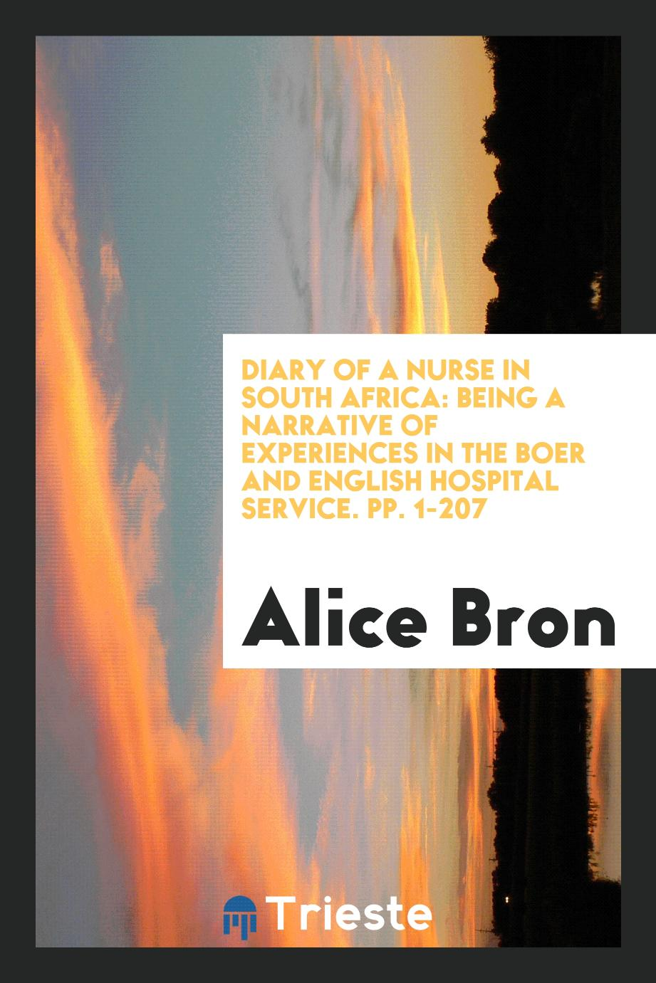 Diary of a Nurse in South Africa: Being a Narrative of Experiences in the Boer and English Hospital Service. pp. 1-207