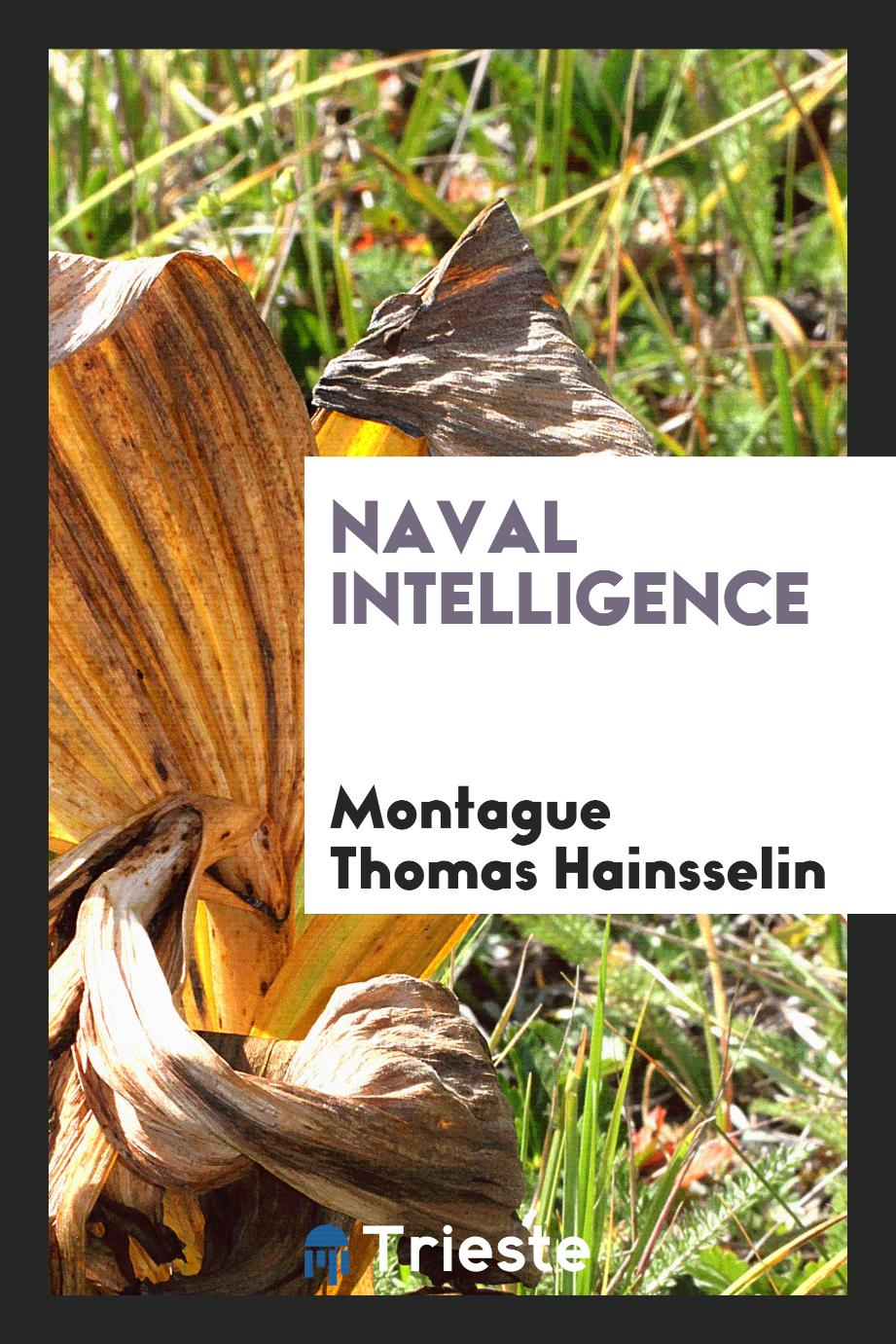 Montague Thomas Hainsselin - Naval intelligence