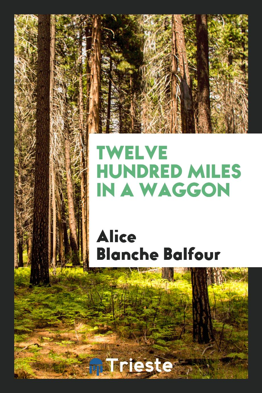 Twelve hundred miles in a waggon
